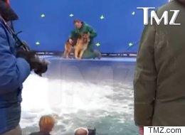 Aucun chien n'a été maltraité dans une vidéo conçue pour indigner
