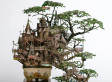 A Model Community: Takanori Aiba's Bonsai Trees