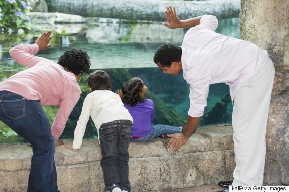 family at the aquarium