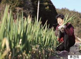 땅은 어디 안 가니까 | 전남 해남에서 대파·봄동 농사짓는 김순복 씨