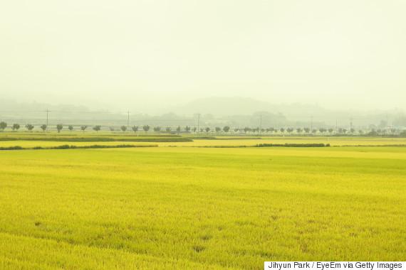korea land