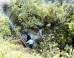 Χανιά: Νεκρή η γυναίκα που είχε πέσει σε γκρεμό στο Κακό Καστέλι