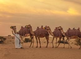 الكشكشة.. العجعجة.. والفحفحة.. ماذا تعرف عن لهجات العرب الفصحى؟