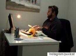 전 세계가 이 사무직 남성을 부러워했다(동영상)
