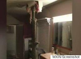 Un homme a failli être empalé par un arbre... dans sa salle de bain