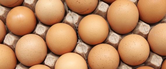 حقائق البيض تعرف عنها شيئاً n-EGG-large570.jpg