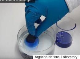 Cette éponge incroyable absorbe le pétrole sans se remplir d'eau