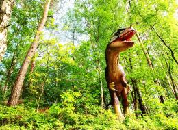 هل الديناصورات لا تزال على قيد الحياة؟ لا تتسرع في الإجابة