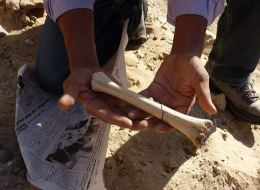 اكتشاف نمط آثار حياة بشرية في تونس تعود إلى 72 ألف سنة