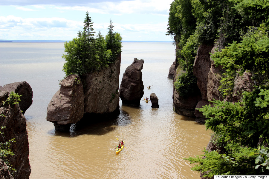 kayak bay of fundy