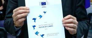 Juncker White Paper