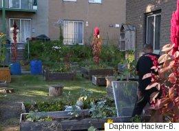 Montréal, immense terrain de jeu pour citoyens engagés