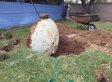 Mann entdeckt Geheimnis auf dem Grundriss seines Hauses - und fängt sofort an zu graben