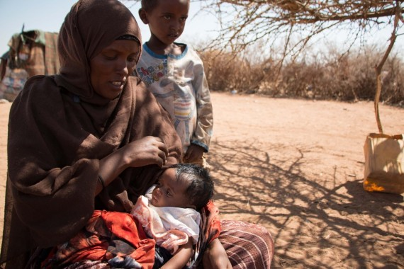 the livestock somalis rely on to survive are dying they worry their children are next