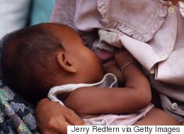 캄보디아 정부가 모유수출을 전면 금지시켰다