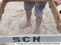 하와이 해변의 모래가 숨기고 있던 것들(동영상)