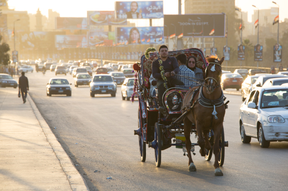 egypt horse carriage
