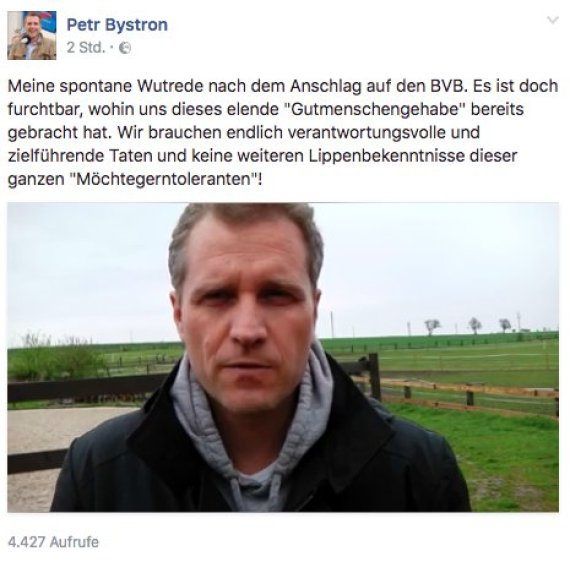 bystron