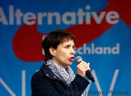 Zukunftsantrag von Frauke Petry oder der Machtkampf innerhalb der AfD