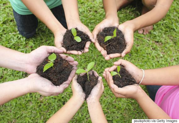 child planting garden