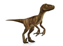 علماء ينجحون في تخليق دجاجة بصفات الديناصورات.. فما هي أوجه الشبه بينهما؟