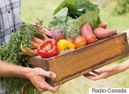 Les paniers bio, un marché en plein essor