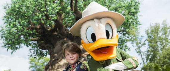 DISNEY WORLD DONALD DUCK