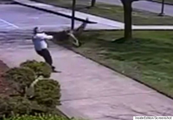 goose attacks police officer