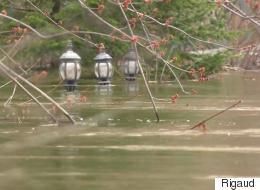 Les inondations forcent Rigaud à décréter l'état d'urgence