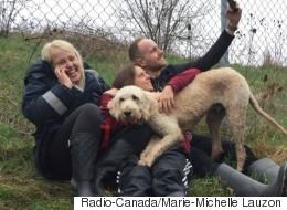 Le chien perdu par Westjet miraculeusement retrouvé