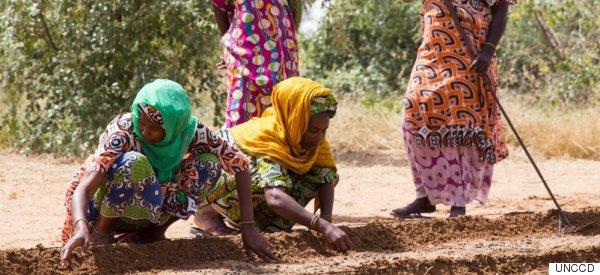 Le Canada prend des mesures concrètes pour lutter contre la désertification