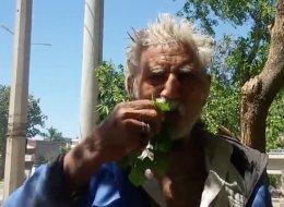 باكستاني يأكل أوراق الشجر منذ 25 عاماً.. فما السبب؟
