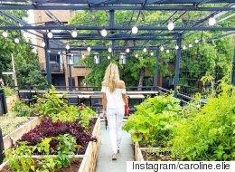 17 terrasses où s'évader cet été