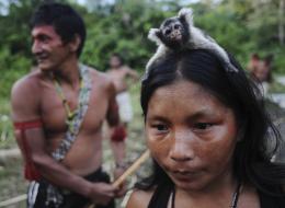 حياتهم لا تعرف الأرقام.. قبيلتان بالأمازون تستخدمان أسلوباً مختلفاً في الحساب