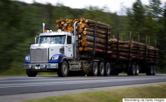 logging british columbia