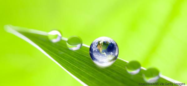 Globale Transformationsprozesse: Unternehmen im Soll?