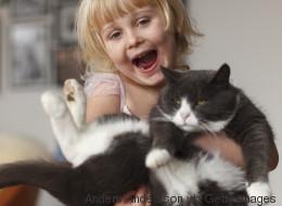 Les chats vous aiment, pour de vrai!