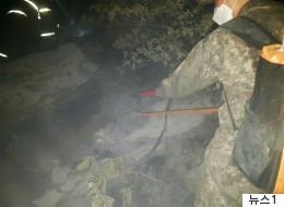 '사드 배치지' 인근에서 산불이 발생했다
