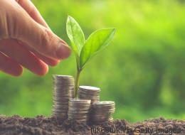 Green Finance: Hinkt Deutschland im internationalen Vergleich hinterher?