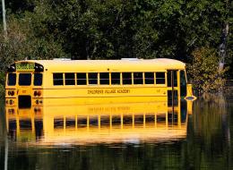 لماذا تُطلى حافلات المدارس باللون البرتقالي والطائرات بالأبيض؟ الأمر مدروسٌ وليس عشوائياً