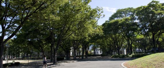 NAGOYA PARK JAPAN AICHI
