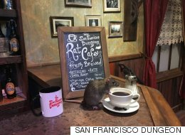 이 카페에서는 고양이 대신 '쥐'와 어울릴 수 있다