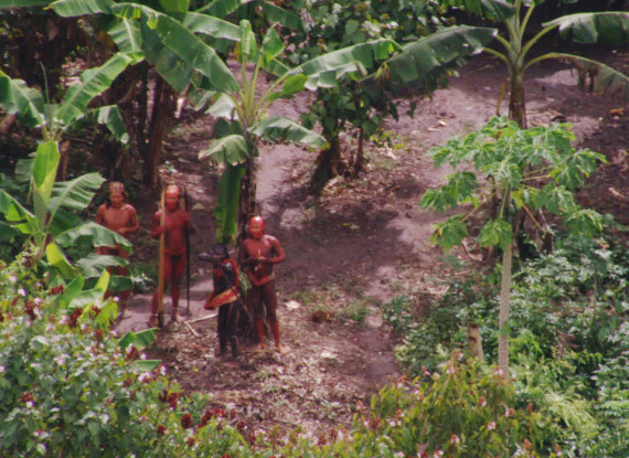uncontacted tribes are not only the most vulnerable peoples on earth they re also vital to its future
