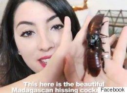 Αυτή η γυναίκα έχει δύο μεγάλες κατσαρίδες για κατοικίδια