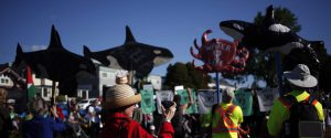 WALK FOR THE SALISH SEA