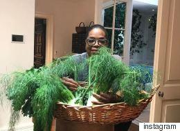 Η Oprah δεν μπορεί να ξεχωρίσει τον άνηθο από τον μάραθο. Εσείς μπορείτε;
