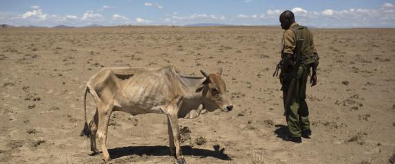 HUNGER IN ETHIOPIA