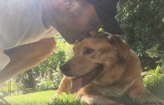 Σκύλος Tom Hardy