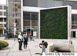 파리와 홍콩에 나타난 거대한 '이끼' 벽의 정체