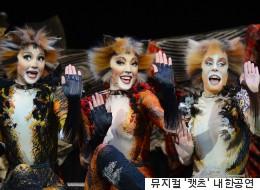 뮤지컬 '캣츠'가 한국 관객을 위해 특별한 것을 준비했다